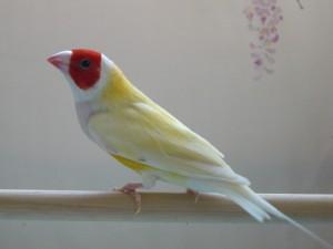 CIMG2078